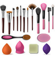 makeup brush professional beauty applicator vector image vector image