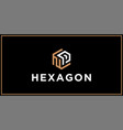 np hexagon logo design inspiration vector image vector image