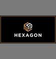 np hexagon logo design inspiration vector image vector image
