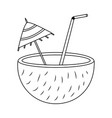 coconut cocktail drink straw and umbrella vector image