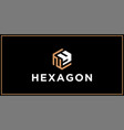 ny hexagon logo design inspiration vector image vector image