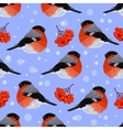 Seamless pattern with bullfinches vector image
