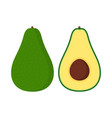 set green avocado isolated on a white vector image