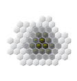 communicable disease cancer hexagon vector image