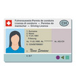 driving license icon flat style vector image