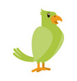parrrot bird cartoon vector image