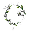 Passiflora white wreath vector image vector image