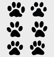 paws of cats vector image vector image