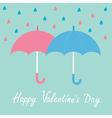 Pink and blue umbrellas Rain Happy Valentines day vector image