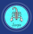 scorpio zodiac sign astrology and horoscope vector image