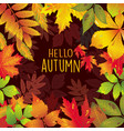 seasonal frame autumnal leaves vector image vector image