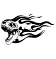 skeleton tyrannosaurus rex with flames vector image vector image