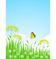 summer meadow with flowers and vector image
