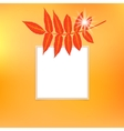 card with autumn decor vector image vector image