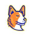 cardigan welsh corgi head mascot vector image vector image