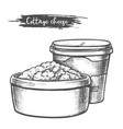 dairy products cottage cheese sketch milk food vector image vector image