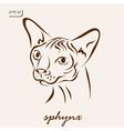 sphynx cat vector image