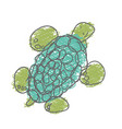 turtle isolated on white background child hand vector image