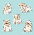 bulldog stickers vector image
