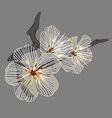 white flower on a branch vector image
