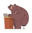 brown bear working on laptop computer businessman