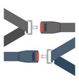 car seat belts ilustration isolated on a white vector image vector image