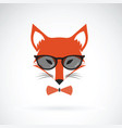 fox wearing glasses on white background animal vector image