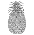 pineapple coloring vector image