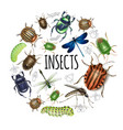 realistic insects round concept vector image vector image