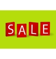 Sale boards vector image vector image