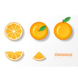 set of oranges in paper art style vector image