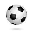 soccer ball isolated on white background leather vector image