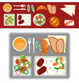 airplane meal on tray vector image vector image