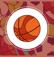 basketball sport ball vector image vector image