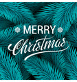 Christmas tree blue fir branches background Merry