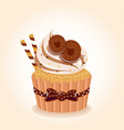 cupcake chocolate brown vector image