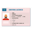 english driving license icon flat style vector image