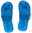 flip-flops vector image vector image