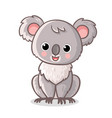 fluffy koala is sitting on a white background vector image vector image