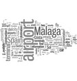 how to fly into malaga spain vector image vector image