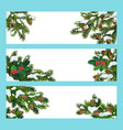pine and holly tree branches christmas banners vector image