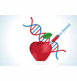 syringe with apple and dna molecule vector image vector image