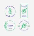 olives emblem for olive oil products vector image vector image