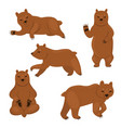 set brown bears isolated on a white background vector image vector image