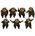 set of bear dance position vector image vector image