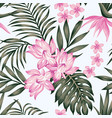 exotic composition leaves flowers white vector image vector image