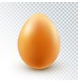 realistic brown chicken egg vector image vector image