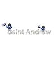 Saint Andrew vector image