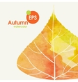 Simple Autumn Background vector image vector image