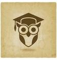 owl in graduation cap wisdom symbol old vector image